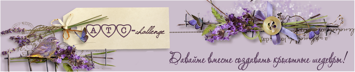 ATC-challenge