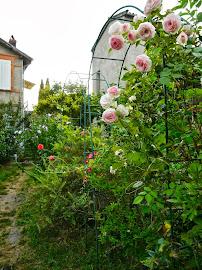 Le jardin de l'atelier musical du cygne (écologique)