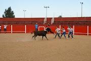 Fotos Vila Boim 2013