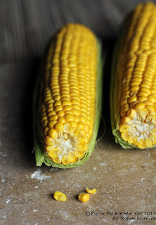 gluten free corn tortillas