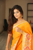 Midhuna New photo session in Saree-thumbnail-11