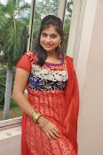 Sangeetha reddy glamorous photos-thumbnail-13