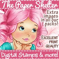 The paper shelter challemge