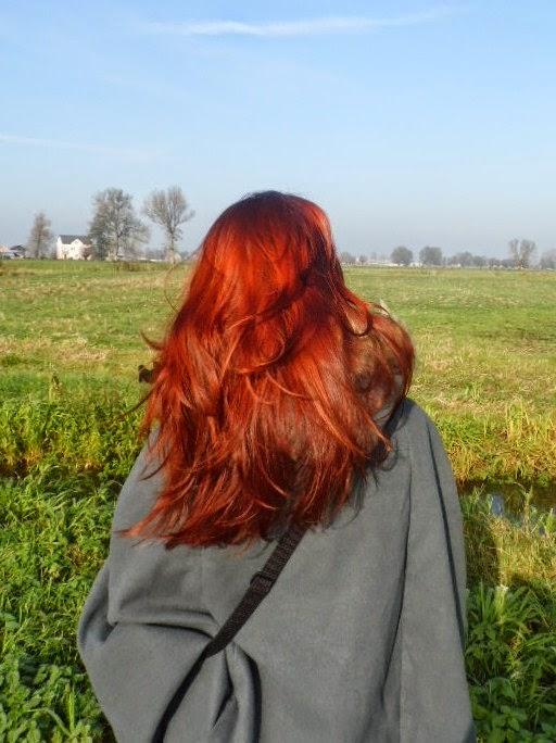 Niedziela dla włosów 13 | hennowanie włosów