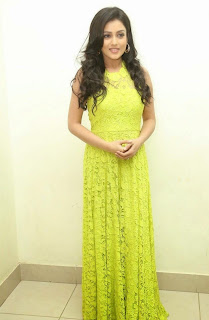 Actress Mishti Chakraborty Picture Gallery in Long Dress at Chinnadana Nee Kosam Audio Launch freshgallery.in51.jpg