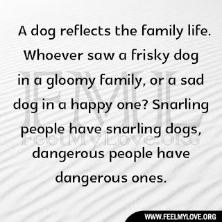 A dog reflects the family life