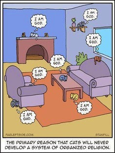 Why cats can't have an organized religion