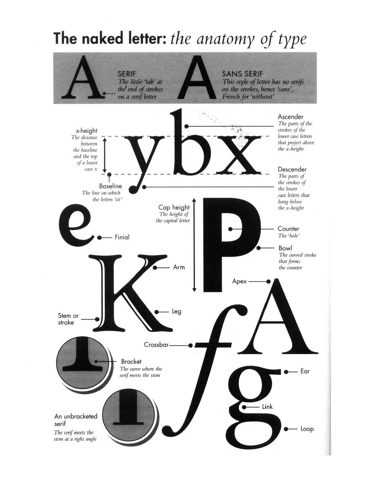 Intro To Typography Cat Normoyle 39 S T H 2 30 Class