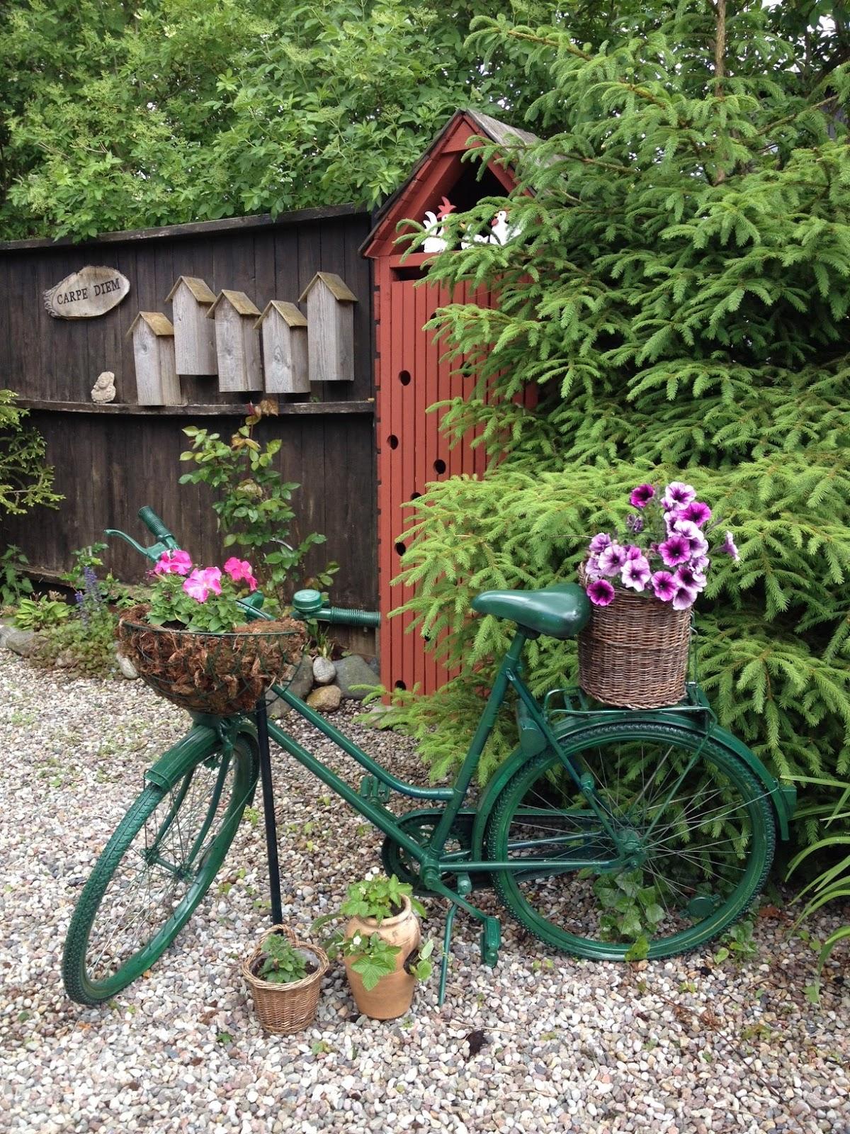 Trädgårdsdesign made by petra: wisteria & syren, accompanjerad av ...