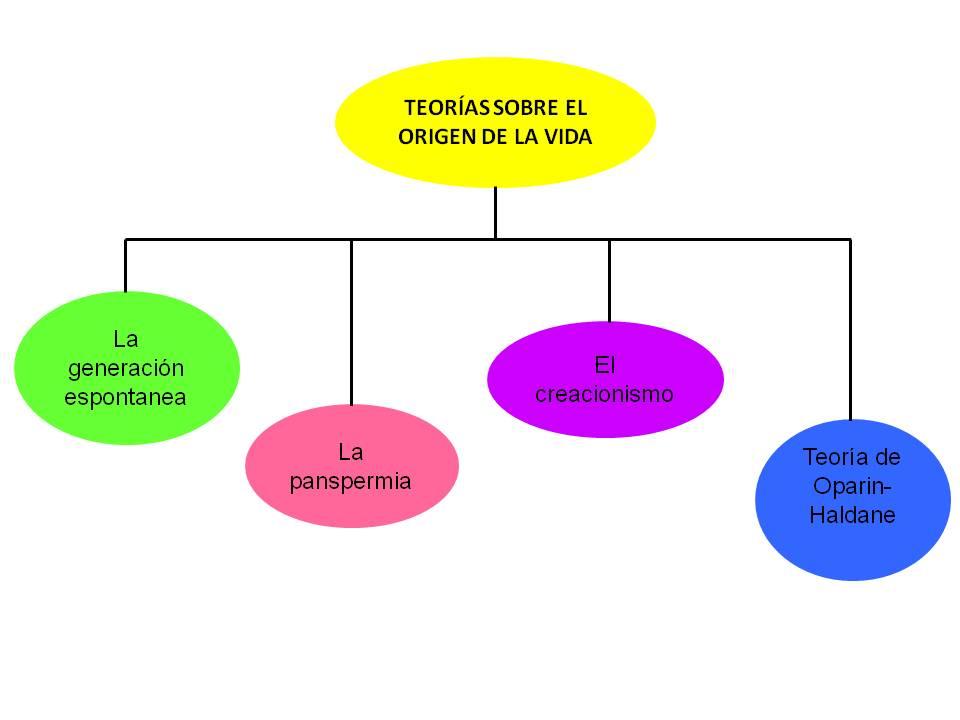 teoria campo conceptual: