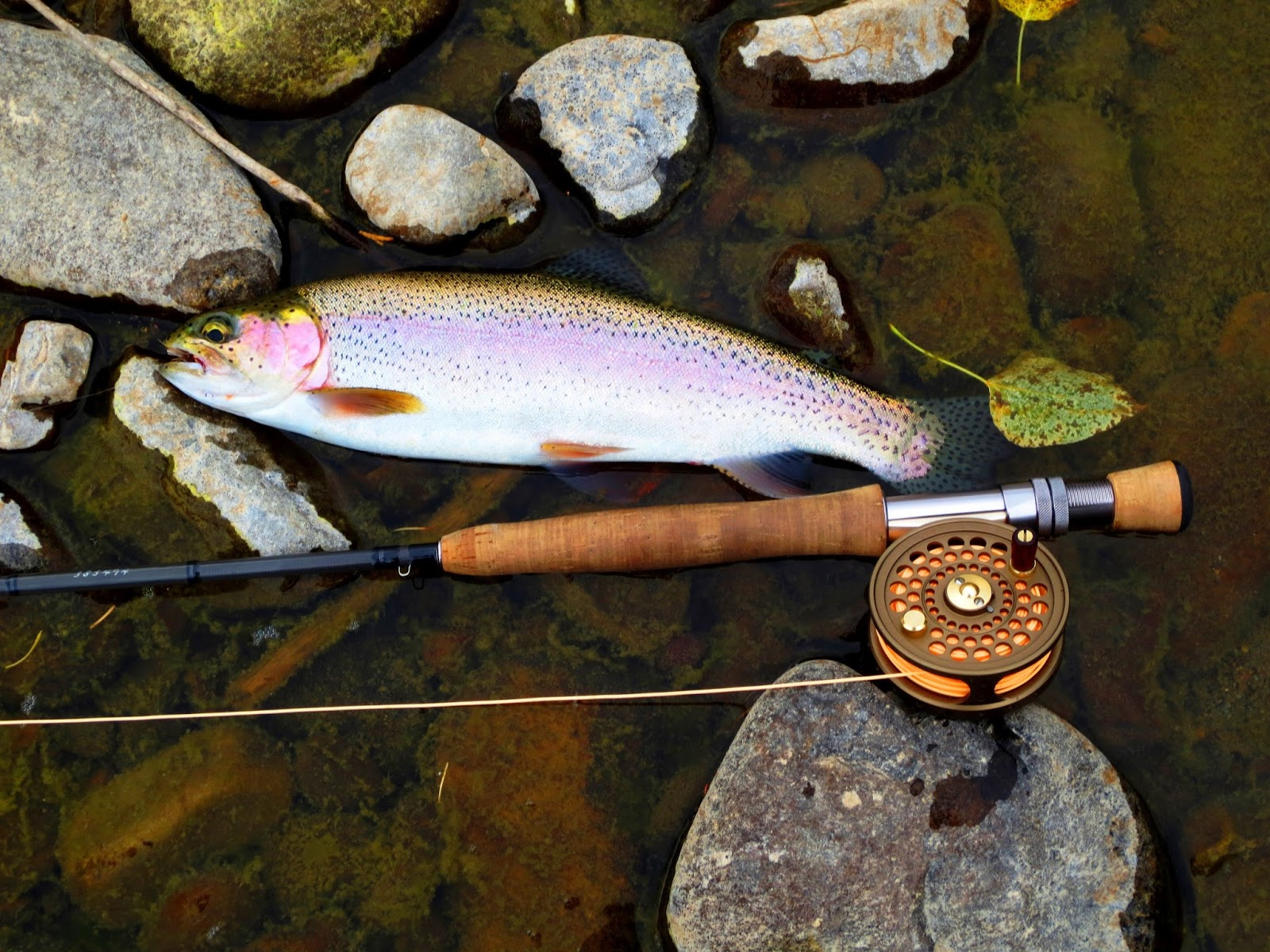 idaho fly fishers | idaho montana fishing | fly fishing trips, Fly Fishing Bait