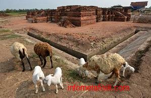 Ditemukan, Kerangka Manusia Berusia 18 Abad di Karawang - infometafisik.com