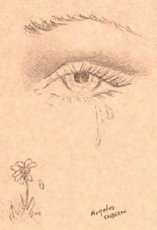 ·MIS POEMAS CON MI VOZ·