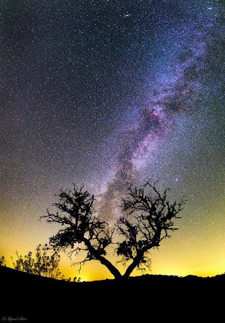 Via Láctea - Foto de Miguel Claro - Portuga