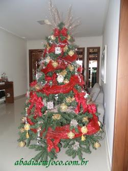 Belezas natalinas
