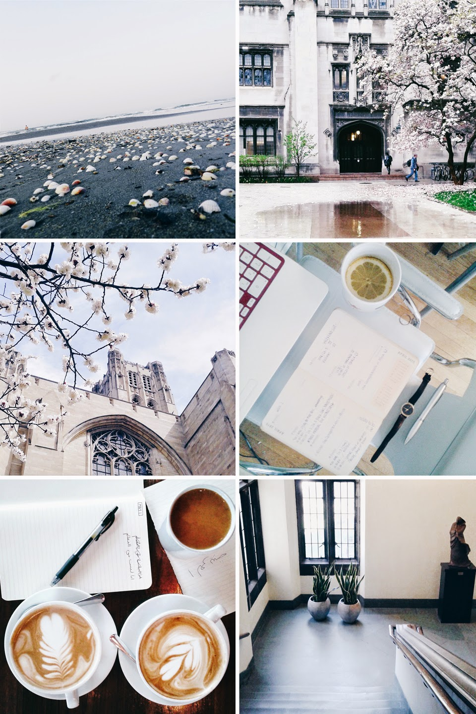 instagram feed, uchicago instagram, instagram tips, instagram tags, uchicago