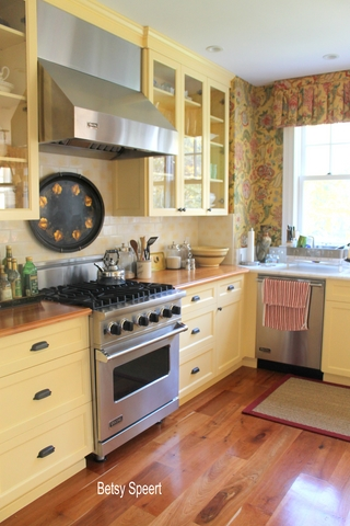 Betsy speert 39 s blog back in florida a buttery kitchen for Aki kitchen cabinets