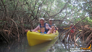 kayak guadeloupe