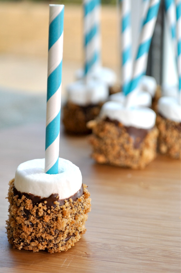 Carina M Creations: S'mores Marshmallow Pops