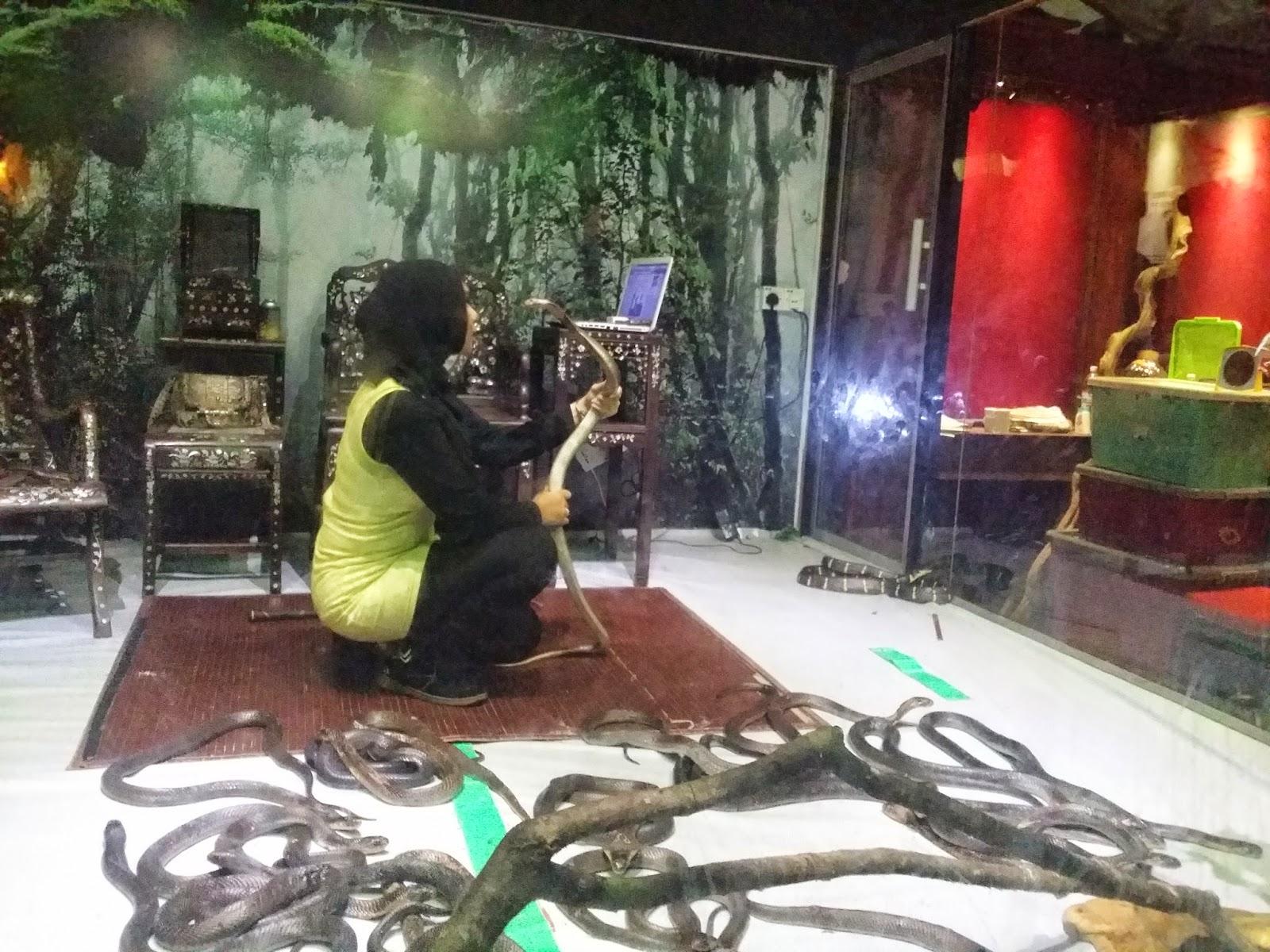 Muzium Negeri Kelantan, Pameran Ular, Pameran Ular di Muzium Negeri Kelantan, snake show, gadis bersama ular, kelantan, tempat menarik di kelantan,