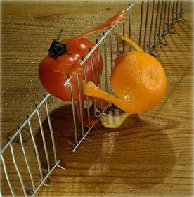 Seni ukir buah
