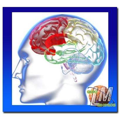 Mejoran tu memoria