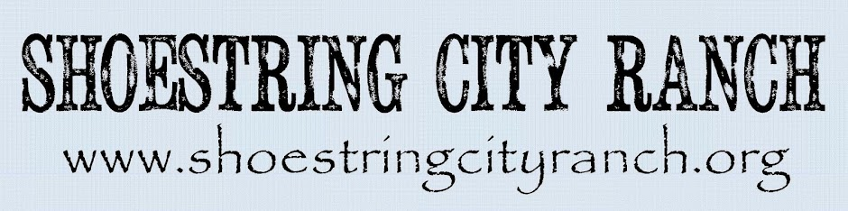 Shoestring City Ranch