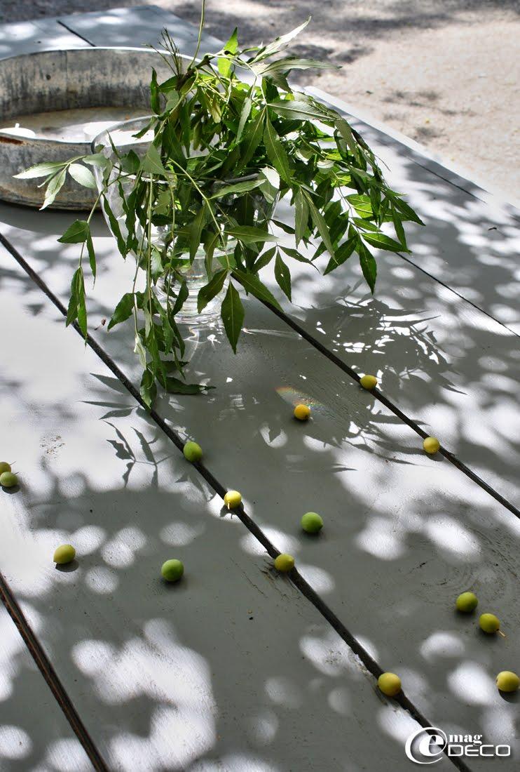 Table en bois peinte à l'ombre de pruniers
