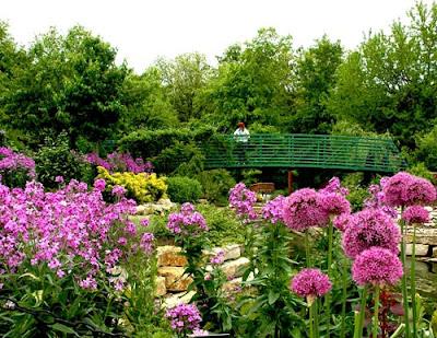 Imagens de Jardim
