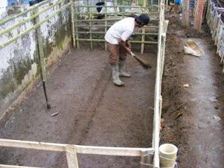 Gambarpengerukan Tanah kolam Terpal Lele.
