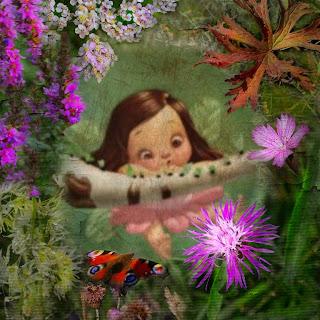 Cerita Dongeng Anak – Peri dan Hutan Berkabut