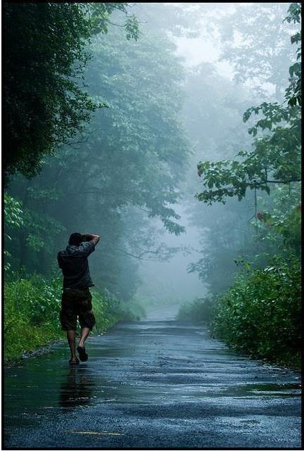 Walking In The Rain Kerala Nostalgic Keralam