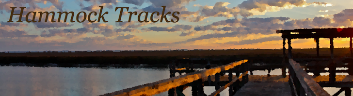 Hammock Tracks