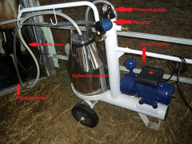 house cow ebook: how to choose a milking machine