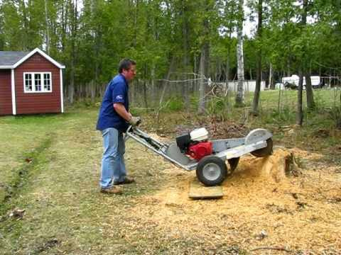 cutting wood with dale how to use a stump grinder. Black Bedroom Furniture Sets. Home Design Ideas