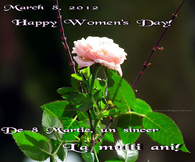 A pink Rose to my mother, March 8 2012, Women Day wishes, La multi Ani