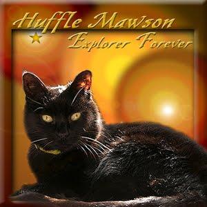 Fly Free Huffle Mawson