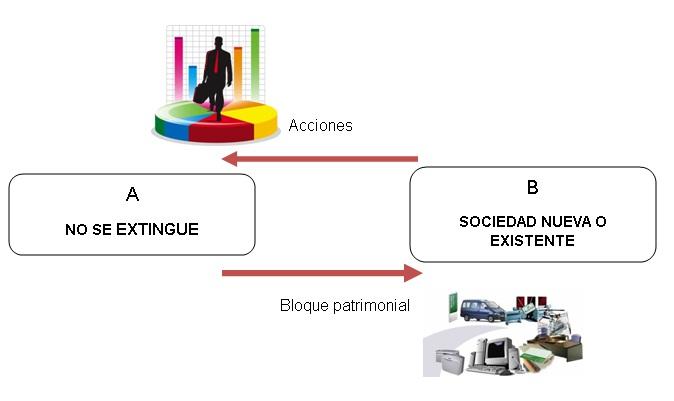 Estructura de una reorganizacion simple