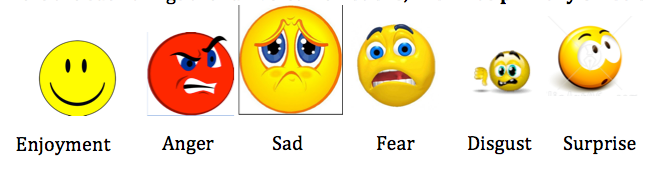 tok reflection on emotion essay Extracts from this document introduction alba ramaj ib09 tok essay title:`evaluate the relative importance of emotion and.