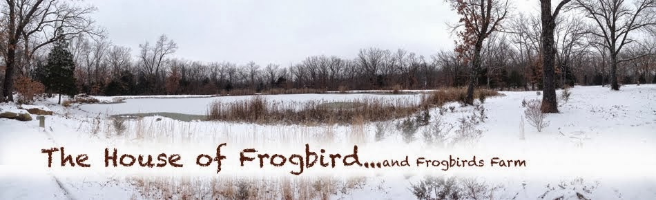 The House of Frogbird