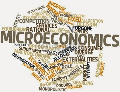 micro economic Macro and micro economic factors macro and micro economic factors various public and independent research institutes as well as researchers have created and used different methodologies and tools to study local competitiveness issues.