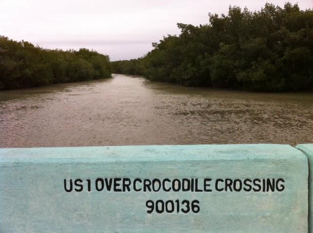 crocodile sign in key largo