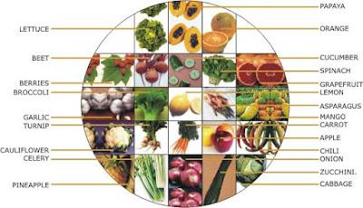 negative calroies food