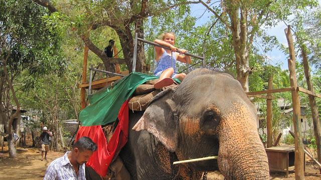 Paseo en elefante en Habarana (Sri Lanka)