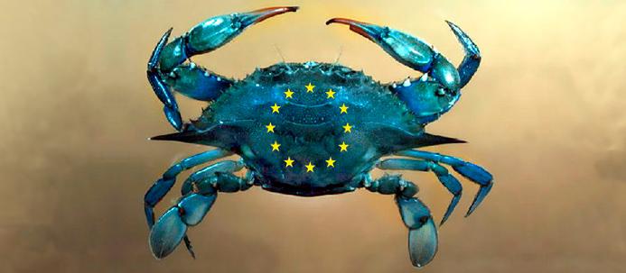 carangueijo azul com estrelas da bandeira europeia