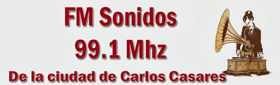 FM Sonidos 99.1