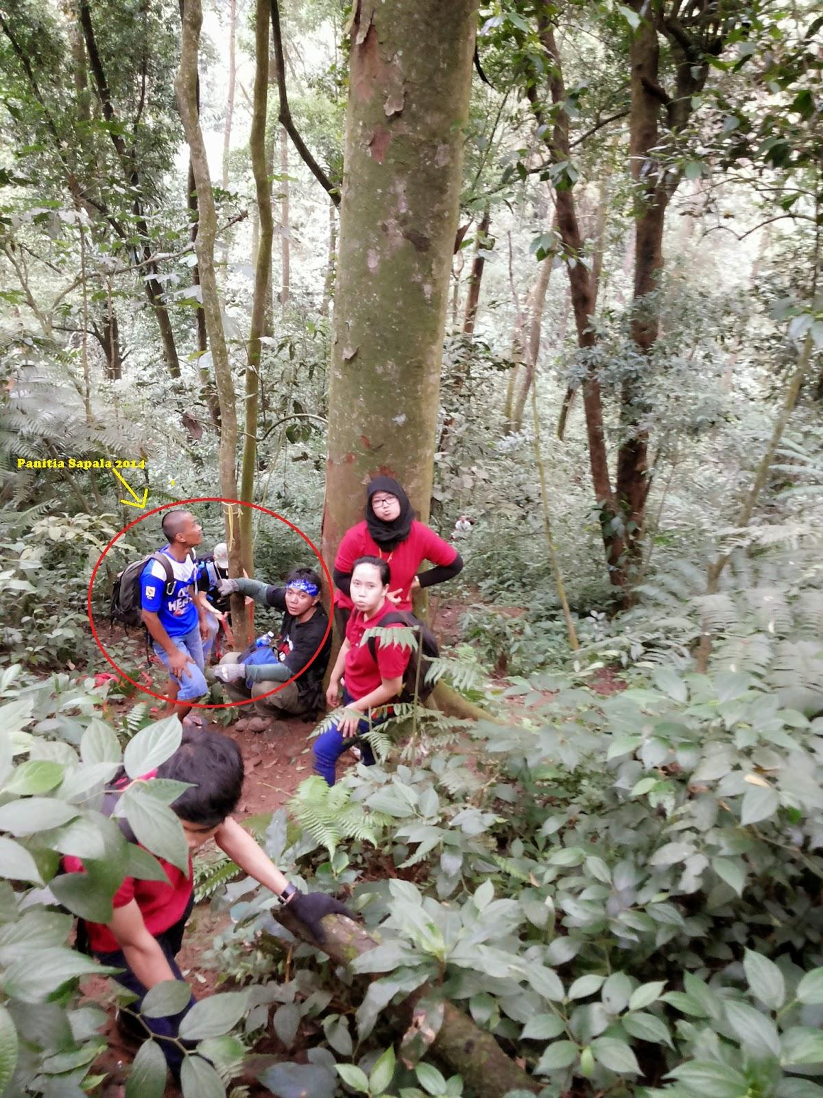 team horee naik gunung