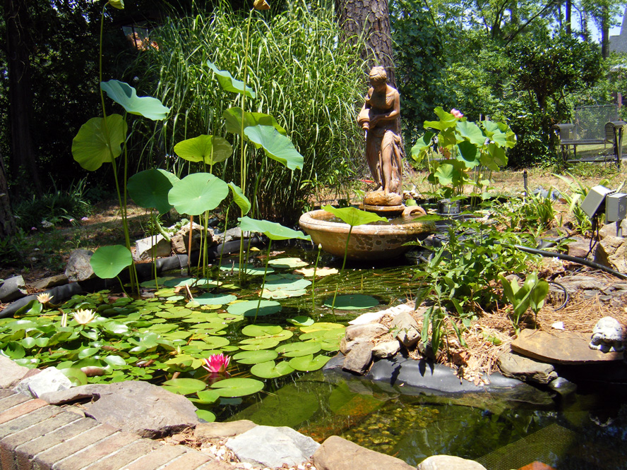 Of the fountain flowers in a city of stone 2 for Artificial plants for outdoor ponds