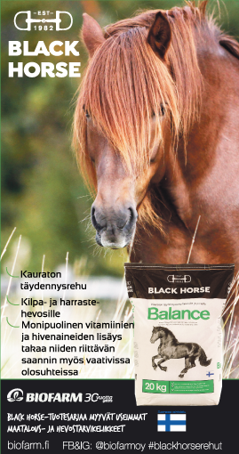 Black Horse Balance