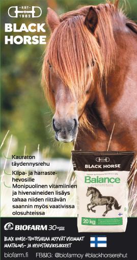 Black Horse Balance